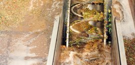 Fruit & Vegetable Processing Waste Water