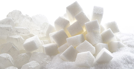 Sugar Processing Specialisation