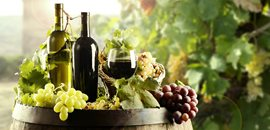 Winery Plants, Distillery Plants, Oil & Seed Processing